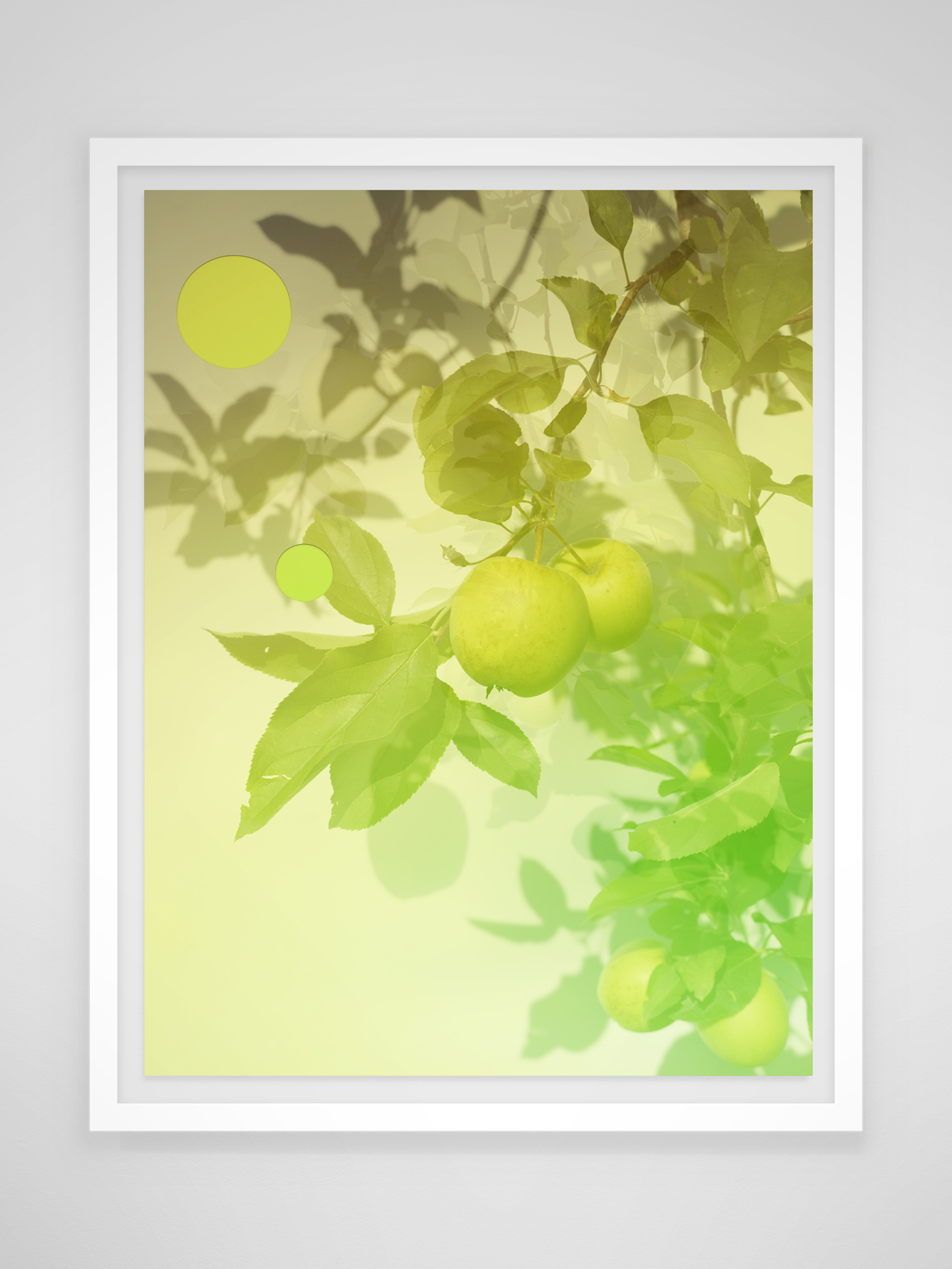 GreenApples_Frame